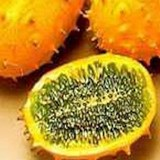 KIWANO - CUCUMIS METULIFERUS - QUESTION 800
